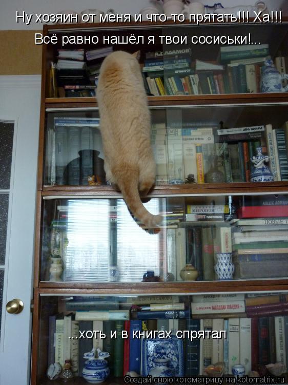 Котоматрица: Ну хозяин от меня и что-то прятать!!! Ну хозяин от меня и что-то прятать!!! Ха!!!  Всё равно нашёл я твои сосиськи! ... ...хоть и в книгах спрятал