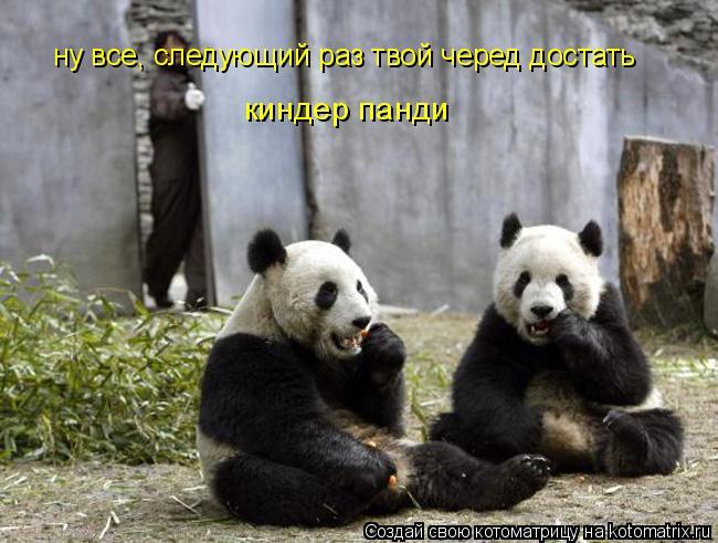 Котоматрица: киндер панди ну все, следующий раз твой черед достать