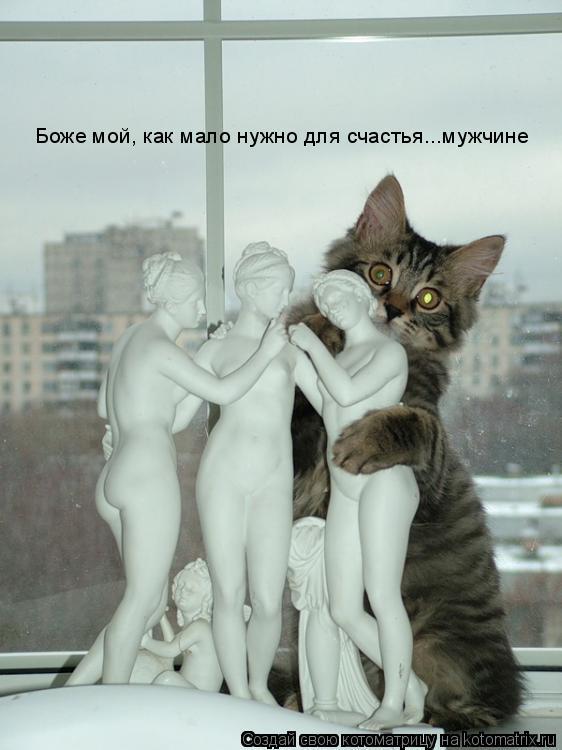 Котоматрица: Боже мой, как мало нужно для счастья...мужчине
