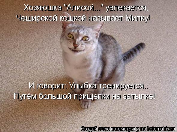 """Котоматрица: Хозяюшка """"Алисой..."""" увлекается, И говорит: Улыбка тренируется... Путём большой прищепки на затылке! Чеширской кошкой называет Милку!"""