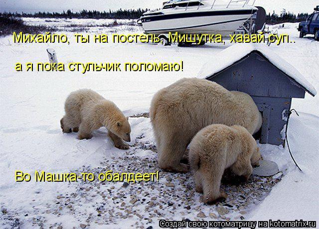 Котоматрица: Михайло, ты на постель, Мишутка, хавай суп..  а я пока стульчик поломаю! Во Машка-то обалдеет!