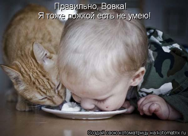 Котоматрица: Правильно, Вовка!  Я тоже ложкой есть не умею!