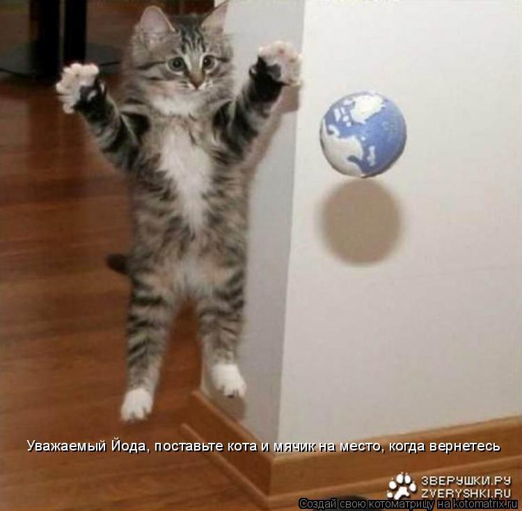 Котоматрица: Уважаемый Йода, поставьте кота и мячик на место, когда вернетесь