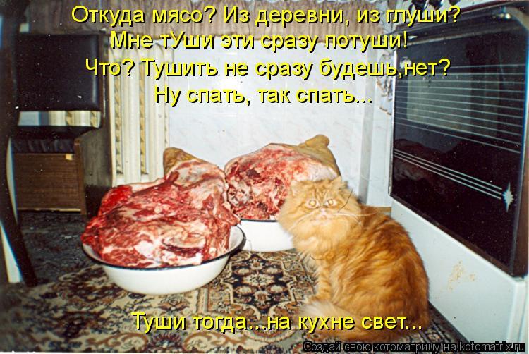 Котоматрица: Откуда мясо? Из деревни, из глуши? Мне тУши эти сразу потуши! Что? Тушить не сразу будешь,нет? Ну спать, так спать... Туши тогда...на кухне свет...