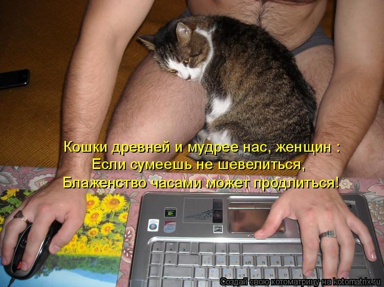 Котоматрица: Если сумеешь не шевелиться, Блаженство часами может продлиться! Кошки древней и мудрее нас, женщин :