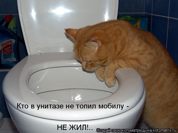 Котоматрица: Кто в унитазе не топил мобилу -  НЕ ЖИЛ!..