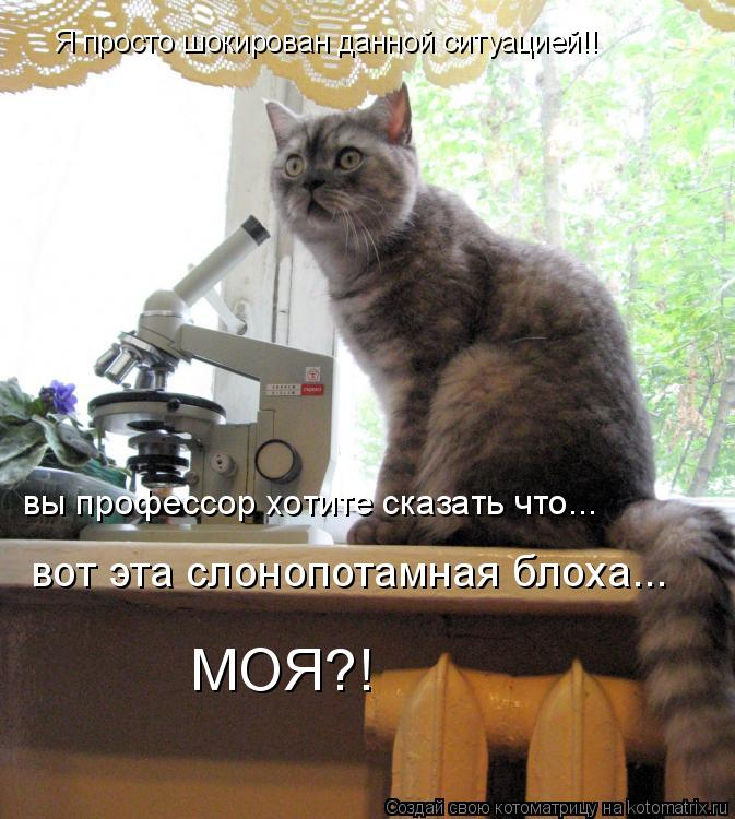 Котоматрица: Я просто шокирован данной ситуацией!! вы профессор хотите сказать что...  вот эта слонопотамная блоха... МОЯ?!