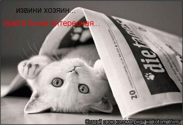 Котоматрица: извини хозяин... газета была интересная...