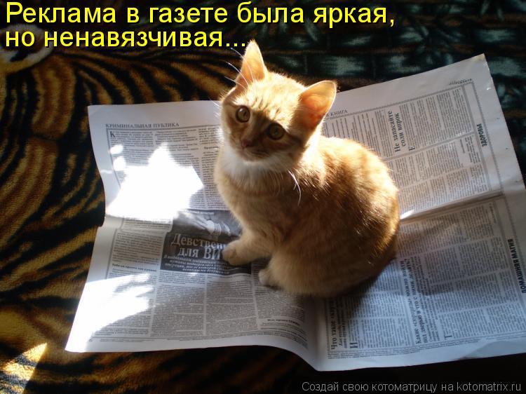 Реклама в газете была яркая,  но ненавязчивая...