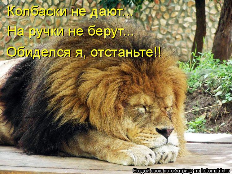 http://kotomatrix.ru/images/lolz/2010/09/22/685131.jpg