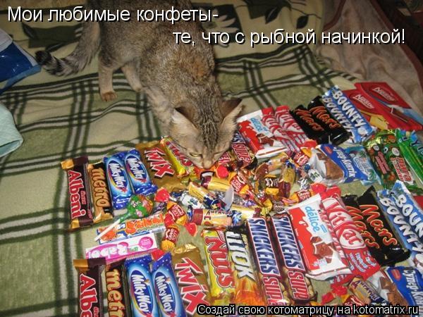 Котоматрица: Мои любимые конфеты- те, что с рыбной начинкой!