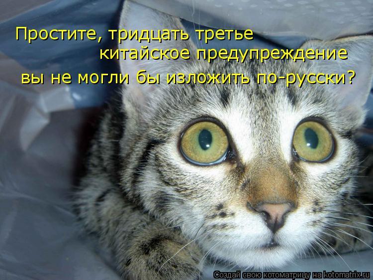 Котоматрица: Простите, тридцать третье  китайское предупреждение вы не могли бы изложить по-русски?