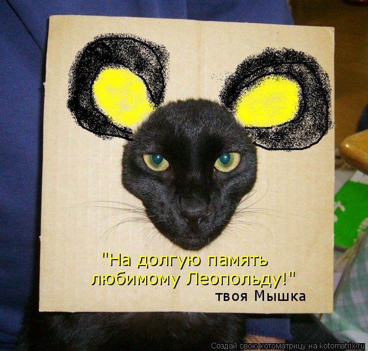 """Котоматрица: """"На долгую память любимому Леопольду!"""" твоя Мышка"""