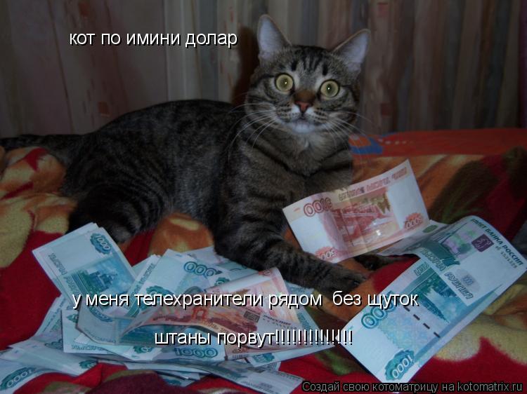 Котоматрица: кот по имини долар у меня телехранители рядом  без щуток штаны порвут!!!!!!!!!!!!!!