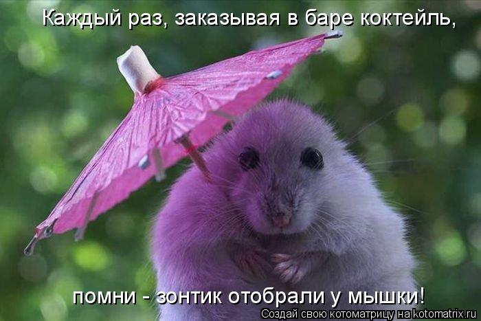 Котоматрица: Каждый раз, заказывая в баре коктейль,  помни - зонтик отобрали у мышки!