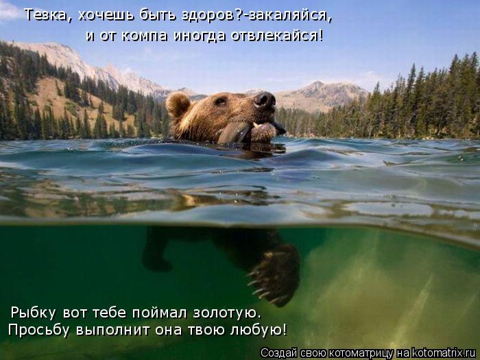 Котоматрица: Тезка, хочешь быть здоров?-закаляйся, и от компа иногда отвлекайся! Рыбку вот тебе поймал золотую. Просьбу выполнит она твою любую!