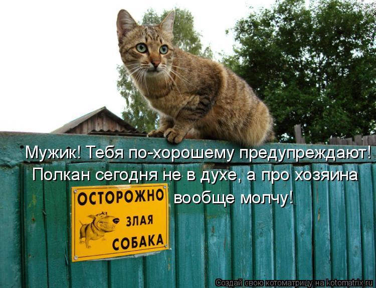 Котоматрица: Мужик! Тебя по-хорошему предупреждают! Полкан сегодня не в духе, а про хозяина вообще молчу!