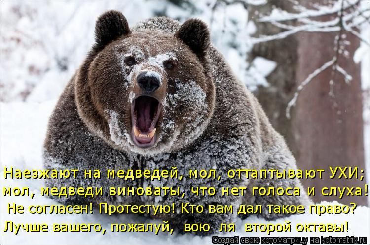 Котоматрица: Наезжают на медведей, мол, оттаптывают УХИ; мол, медведи виноваты, что нет голоса и слуха! Не согласен! Протестую! Кто вам дал такое право? Луч