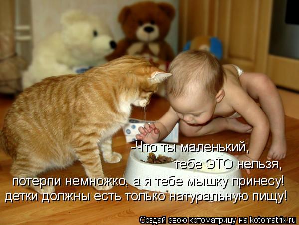 Котоматрица: -Что ты маленький,  тебе ЭТО нельзя,   потерпи немножко, а я тебе мышку принесу! детки должны есть только натуральную пищу!