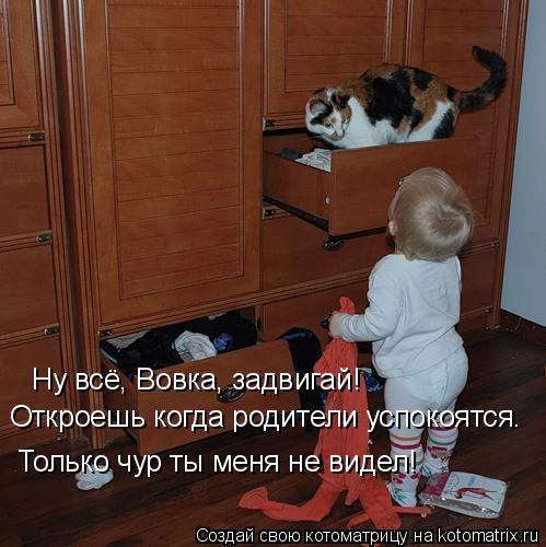 Котоматрица: Ну всё, Вовка, задвигай!  Откроешь когда родители успокоятся. Только чур ты меня не видел!