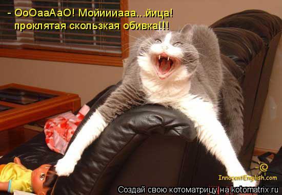 Котоматрица: - ОоОааАаО! Мойиииааа...йица! проклятая скользкая обивка!!!