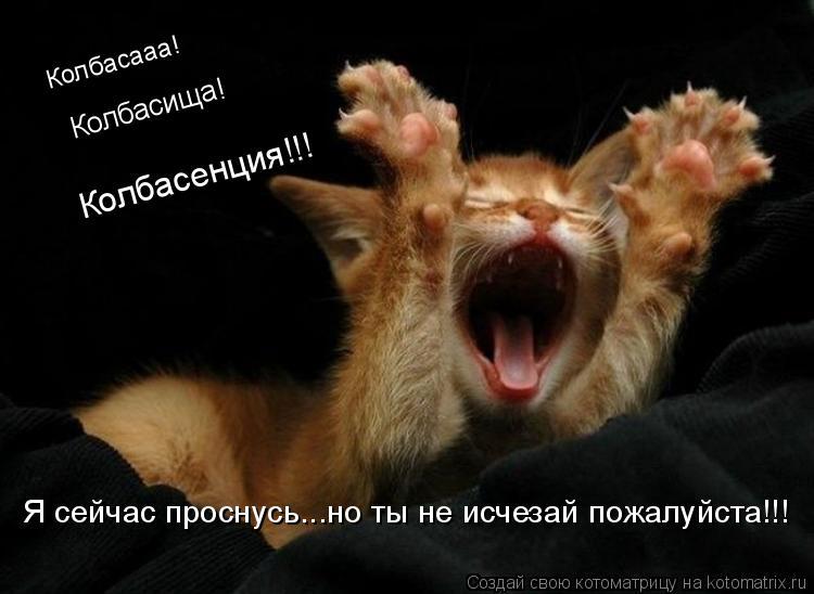 Котоматрица: Колбасааа! Колбасища! Колбасенция!!! Я сейчас проснусь...но ты не исчезай пожалуйста!!!