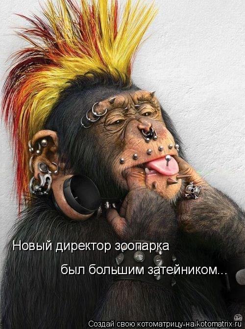 Котоматрица: Новый директор зоопарка  был большим затейником...