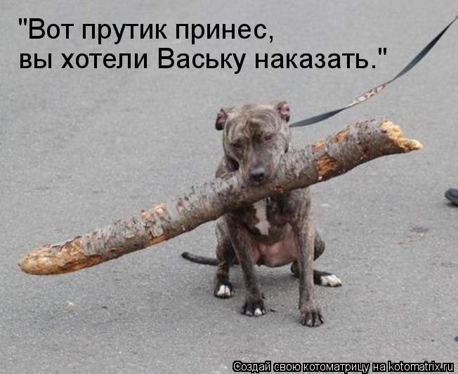 """""""Вот прутик принес, вы хотели Ваську наказать."""""""