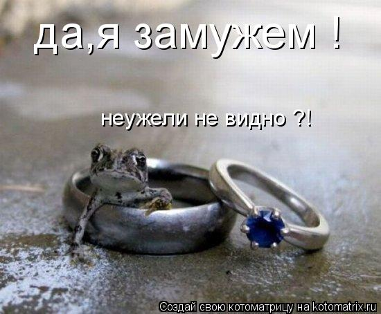 Котоматрица: да,я замужем ! неужели не видно ?!
