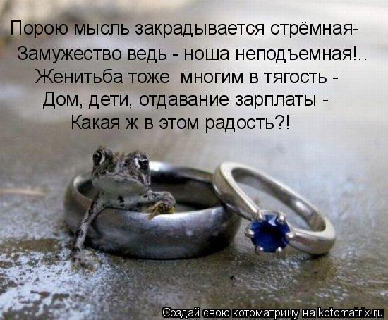 Котоматрица: Замужество ведь - ноша неподъемная!.. Женитьба тоже  многим в тягость -  Дом, дети, отдавание зарплаты -  Какая ж в этом радость?! Порою мысль за