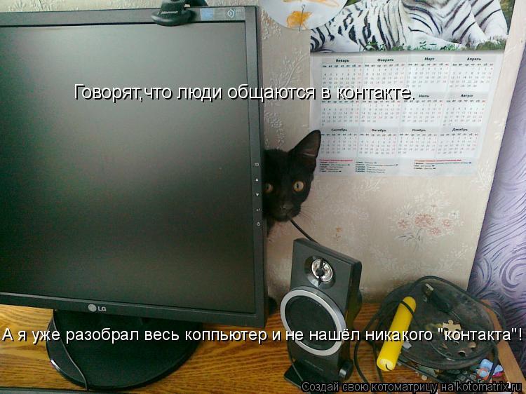 """Котоматрица: Говорят,что люди общаются в контакте. А я уже разобрал весь коппьютер и не нашёл никакого """"контакта""""!"""