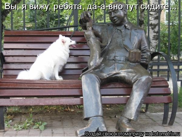 Котоматрица: Вы, я вижу, ребята, да-а-вно тут сидите...