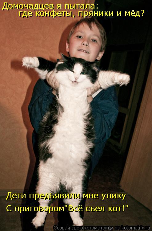 """Котоматрица: Домочадцев я пытала: где конфеты, пряники и мёд? Дети предъявили мне улику С приговором""""Всё съел кот!"""""""