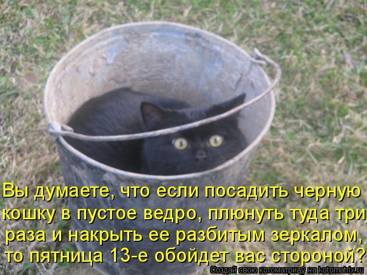 Котоматрица: Вы думаете, что если посадить черную кошку в пустое ведро, плюнуть туда три раза и накрыть ее разбитым зеркалом, то пятница 13-е обойдет вас с