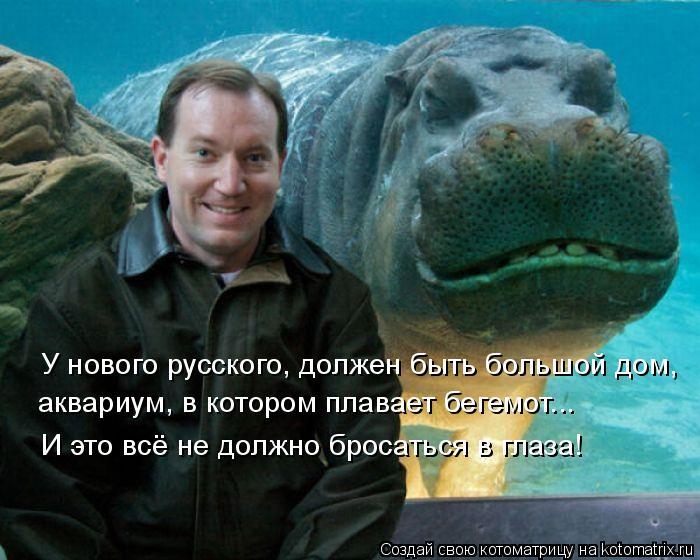 Котоматрица: У нового русского, должен быть большой дом,  аквариум, в котором плавает бегемот... И это всё не должно бросаться в глаза!