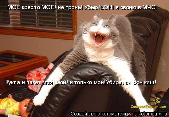 Котоматрица: МОЕ кресло МОЕ! не тронь! Убью!ВОН! я звоню в МЧС!   Кукла и пакет мой! мой! и только мой!Убирайся Вон киш!