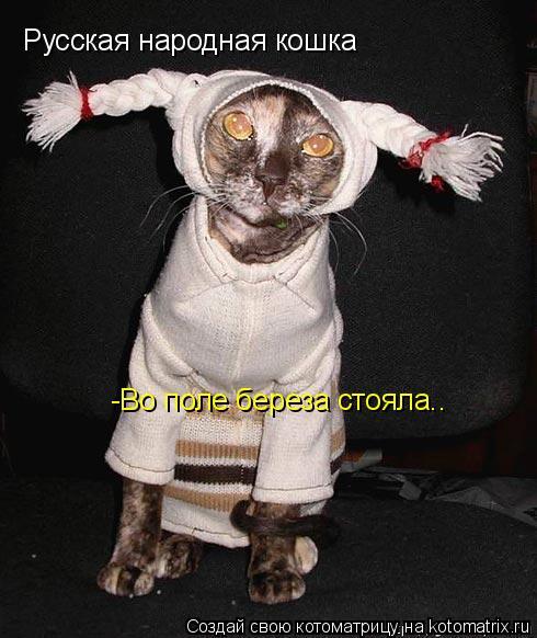 Котоматрица: Русская народная кошка -Во поле береза стояла..
