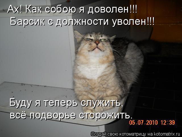 Котоматрица: Ах! Как собою я доволен!!!  Барсик с должности уволен!!! Буду я теперь служить, всё подворье сторожить.