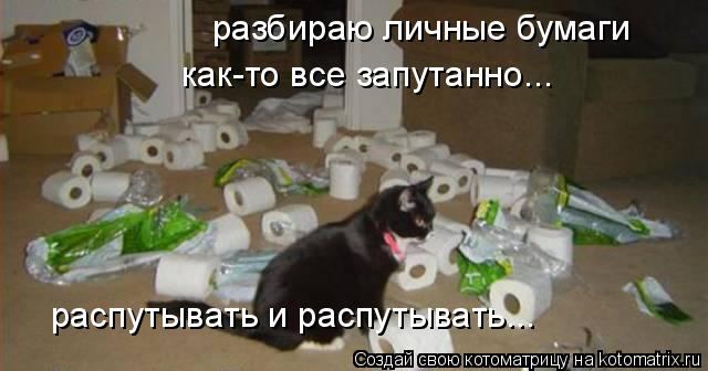 Котоматрица: разбираю личные бумаги как-то все запутанно... распутывать и распутывать...