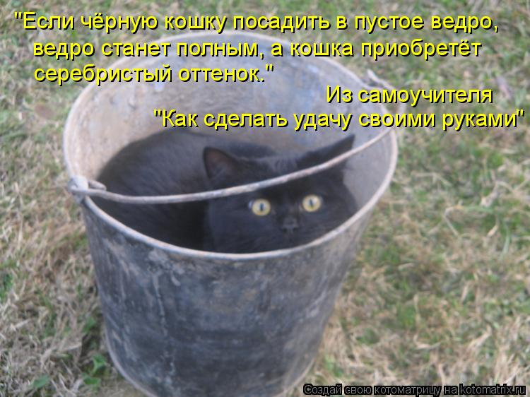 """""""Если чёрную кошку посадить в пустое ведро, ведро станет полным, а кош"""