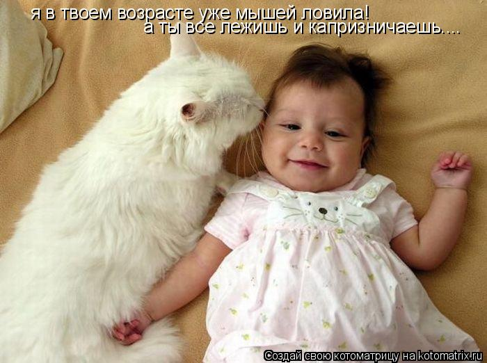 Котоматрица: я в твоем возрасте уже мышей ловила! а ты все лежишь и капризничаешь....