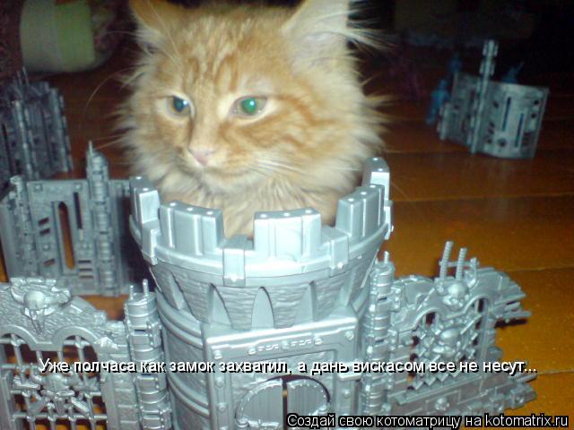 Котоматрица: Уже полчаса как замок захватил, а дань вискасом все не несут...