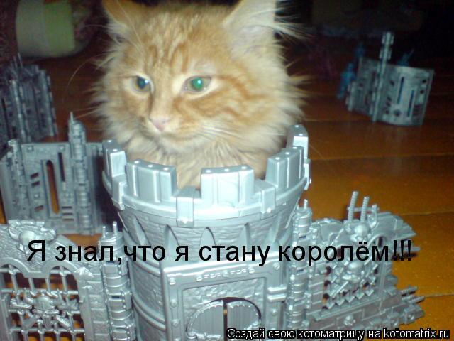 Котоматрица: Я знал,что я стану королём!!!
