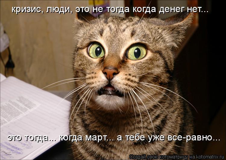 Котоматрица: кризис, люди, это не тогда когда денег нет... это тогда... когда март... а тебе уже все-равно...