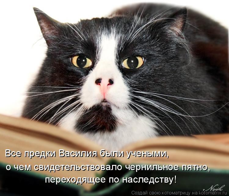Котоматрица: Все предки Василия были учеными, о чем свидетельствовало чернильное пятно, переходящее по наследству!