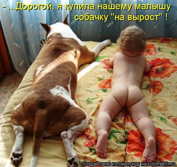 """Котоматрица: - ...Дорогой, я купила нашему малышу собачку """"на вырост"""" !"""