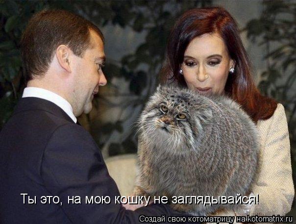 Котоматрица: Ты это, на мою кошку не заглядывайся!
