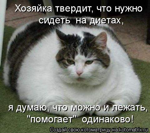 """Котоматрица: Хозяйка твердит, что нужно сидеть  на диетах, я думаю, что можно и лежать, """"помогает""""  одинаково!"""