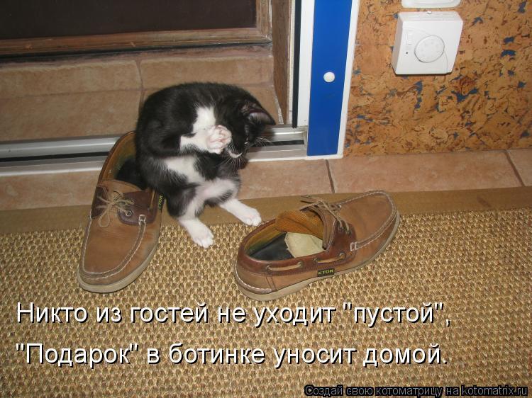 """Котоматрица: Никто из гостей не уходит """"пустой"""", """"Подарок"""" в ботинке уносит домой."""