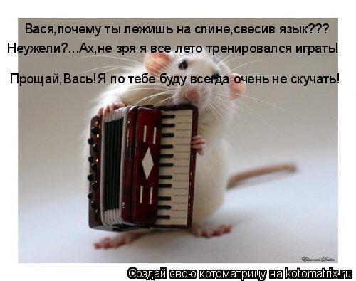 Котоматрица: Вася,почему ты лежишь на спине,свесив язык??? Неужели?...Ах,не зря я все лето тренировался играть! Прощай,Вась!Я по тебе буду всегда очень не ск